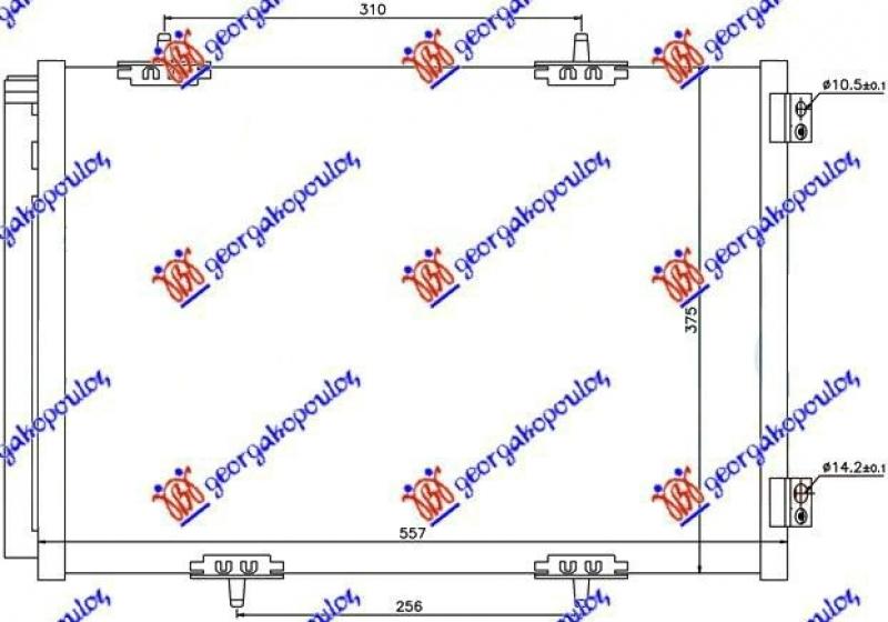HLAD KLIME BEN-DIZ  (55.7x37.5)